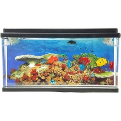 Playlearn USA Fish Tank...
